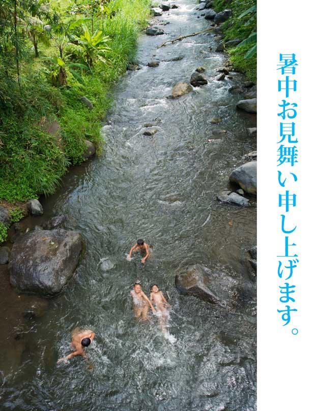 暑中見舞い2012.jpg